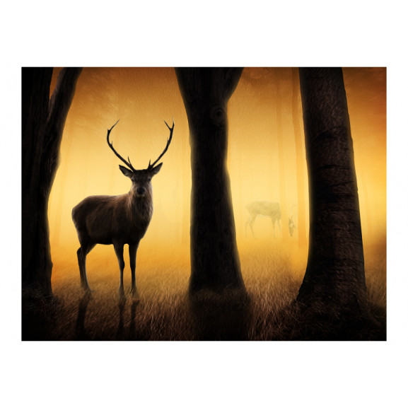 Fototapet Deer In His Natural Habitat 200 cm x 154 cm naturlich.ro