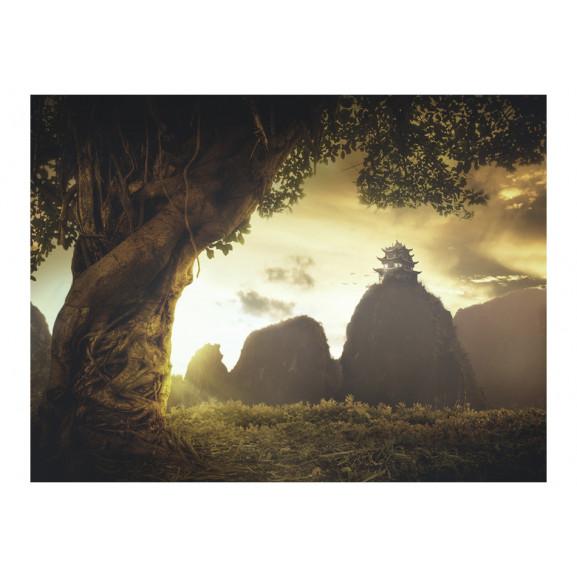 Fototapet Mysterious China 200 cm x 154 cm naturlich.ro