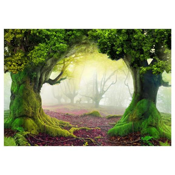 Fototapet Enchanted Forest 100 cm x 70 cm naturlich.ro