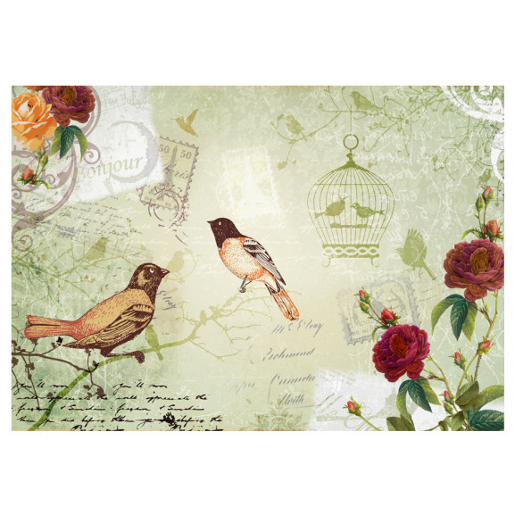 Fototapet Vintage Birds 100 cm x 70 cm naturlich.ro