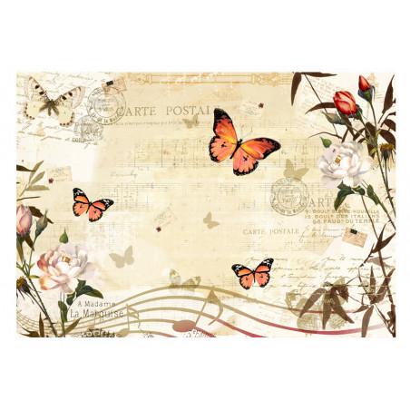 Fototapet Melodies Of Butterflies 100 cm x 70 cm-01