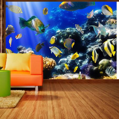 Fototapet Underwater Adventure 100 cm x 70 cm-01