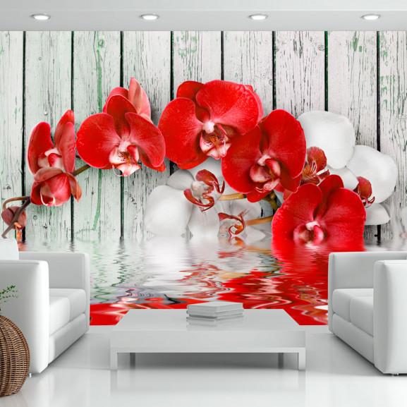 Fototapet Ruby Orchid 100 cm x 70 cm