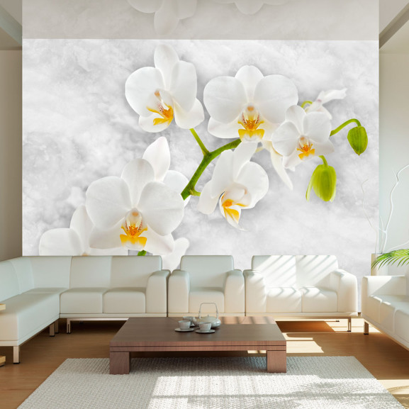 Fototapet Lyrical Orchid White 100 cm...