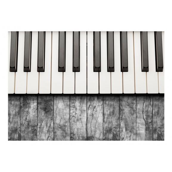 Fototapet Inspired By Chopin Grey Wood 100 cm x 70 cm naturlich.ro