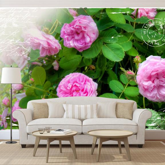 Fototapet Summer Garden 100 cm x 70 cm