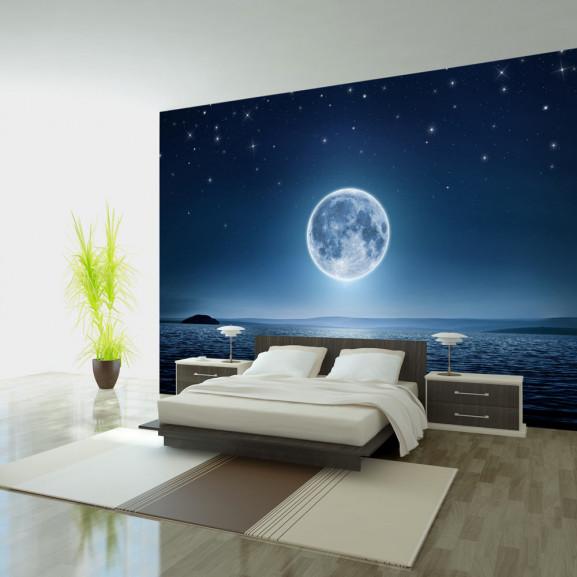 Fototapet Moonlit Night 100 cm x 70 cm