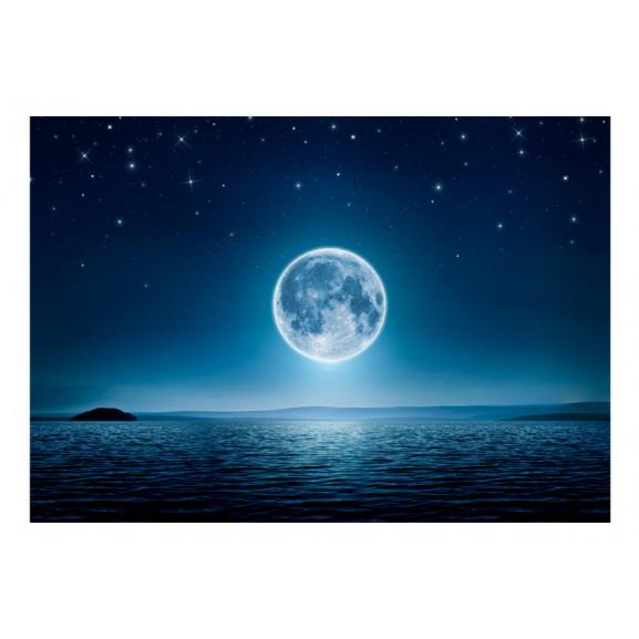 Fototapet Moonlit Night 100 cm x 70 cm naturlich.ro