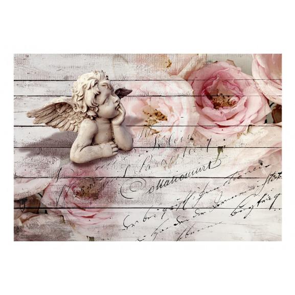 Fototapet Angel And Calm 100 cm x 70 cm naturlich.ro