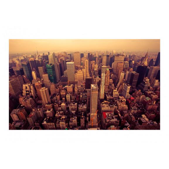 Fototapet Bird Eye View Of Manhattan, New York 450 cm x 270 cm naturlich.ro