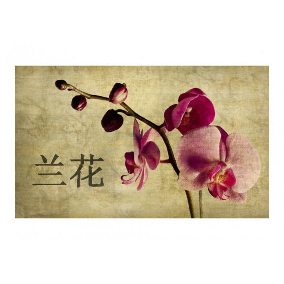 Fototapet Japanese Orchid 450 cm x 270 cm naturlich.ro